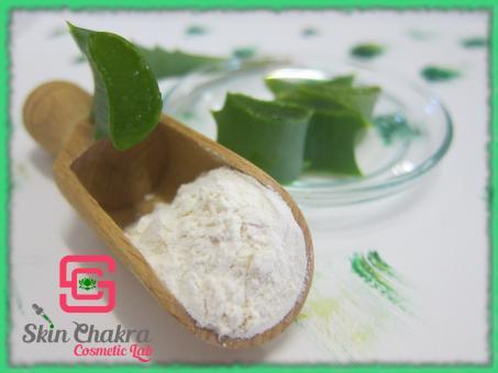 Organic aloe vera powder 200:1