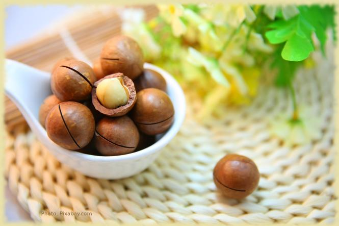 Macadamia nut oil, organic, cold pressed